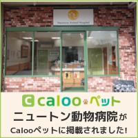 caloopetペット ニュートン動物病院がcaloopetペットに掲載されました!